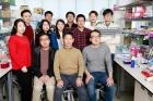 Professor-Jeong-Beom-Kim-and-his-team.jpg