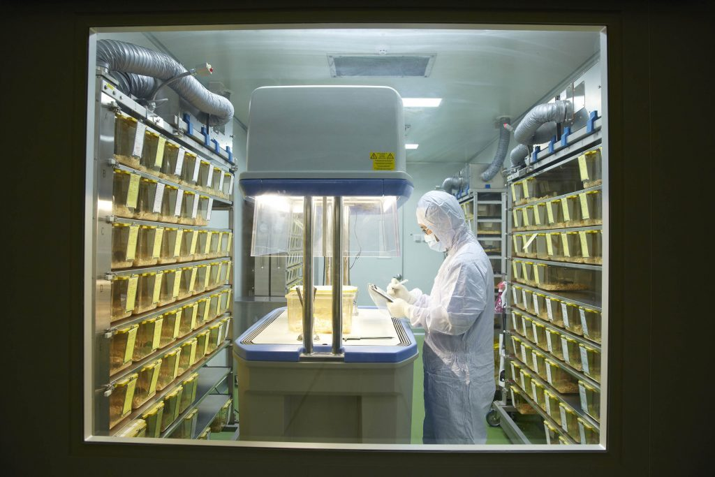 A researcher is examining the laboratory mice at the husbandry, UNIST.