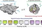 Hybrid-carbon-nanostructure-2.jpg