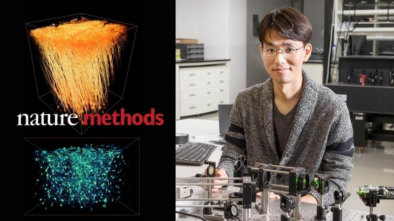 Examining Live Brains with New Adaptive-Optics Technology