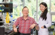 Self-propelled Colloids Open Up A Brave New World