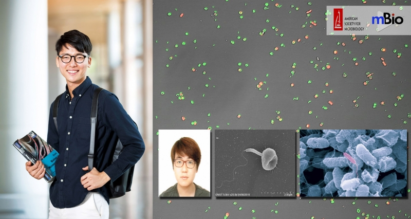 UNIST Researchers Reveal How One Bacterium Inhibits Predators with Poison