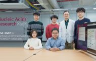 UNIST Presents New Method for Finding Disease-Susceptibility Genes