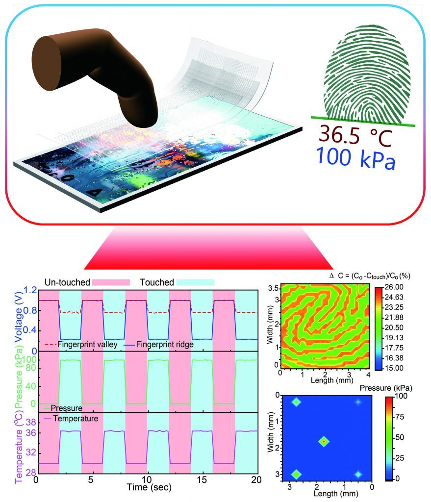 Transparent and flexible fingerprint sensor 1