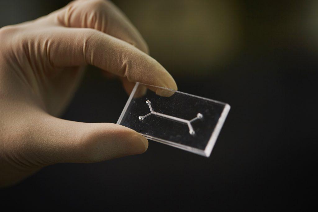 organ-on-a-chip, UNIST