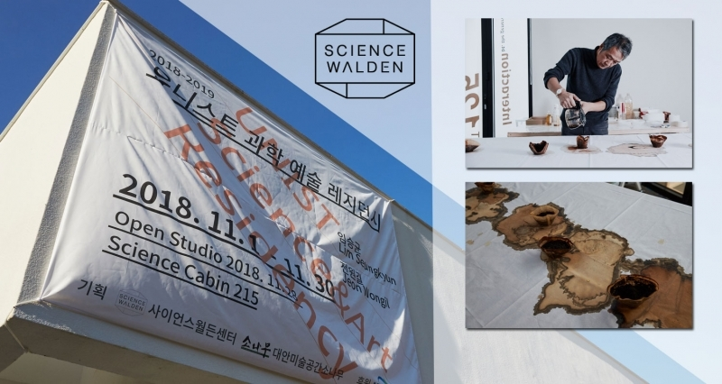 Science Cabin Residency Project: A Blending of Science and Art