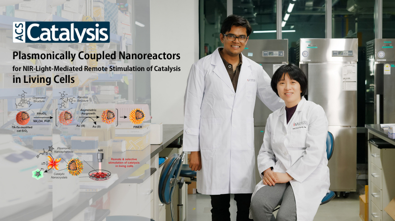 Scientists Introduce Novel Synthetic Strategy for PINERs