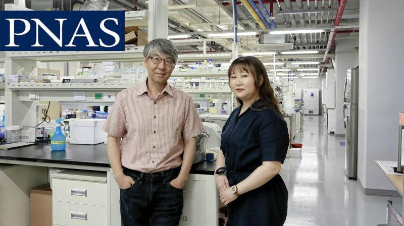 New Study Reveals A Novel Way to Promote Axon Regeneration