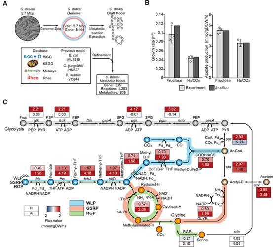 KAIST-UNIST joint research_PNAS 2