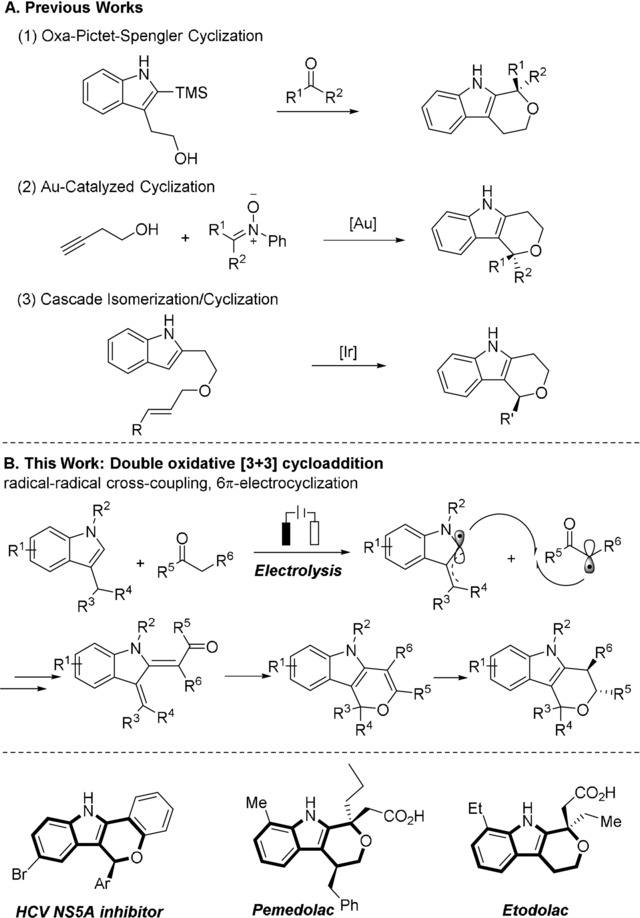 Previously developed synthetic methods and bioactive [2,3]‐fused indoles.