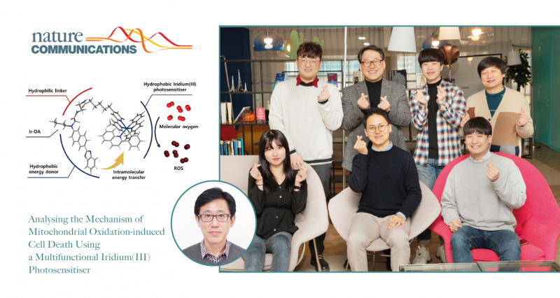 Analyzing Mechanism of Mitochondrial Oxidation-induced Cell Death, Using Multifunctional Iridium Photosensitiser