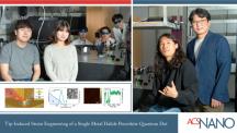 Tip-Induced Strain Engineering of Single Metal Halide Perovskite Quantum Dot
