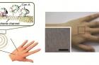 그래핀-금속-나노와이어-하이브리드-구조를-이용해-제작한-투명한-웨어러블-무선-스마트-센서.jpg