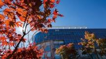 반부패·청렴 우수기관으로 선정된 UNIST 캠퍼스의 가을 풍경. 청명한 가을 하늘을 배경으로 학술정보관이 보인다. | 사진: 안홍범
