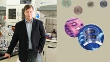 바르토슈 그쥐보브스키(Bartosz Grzybowski) 교수가 자신의 실험실에서 포즈를 취하고 있다. 오른쪽 그림은 이번에 개발한 금 나노입자로 만든 유연한 전자소자의 모습이다.   사진: 김경채, 디자인: 이덕기