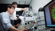 민경태 생명과학부 교수와 웨이 왕(Wei Wang) 박사 후 연구원이 공초점현미경으로 뇌 신경세포의 축삭돌기를 관찰하고 있다. | 사진: 김경채