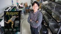 권태준 교수가 아프리카발톱개구리 실험실에서 기념 사진을 촬영했다. 왼쪽은 10월 20일자 Nature 표지다. | 사진: 김경채, 표지 출처: Nature