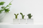 4_Plant-Diary_동상_메인이미지.jpg