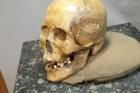 악마문-동굴인-두개골-사진_Elizaveta-Veselovskaya-2.jpg