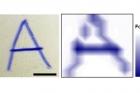 그림4_터치스크린에-글씨를-쓰면서-누른-힘의-크기에-따라-진하기가-다르게-나타나-필적-감정에-이용할-수-있다.jpg