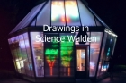 Drawings-in-Science-Walden-1.jpg
