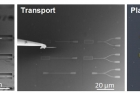 그림2-양자점-나노-구조와-실리콘-광학구조-결합-과정.jpg