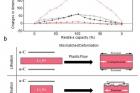 그림3_일반적인-실리콘과-탄소층이-코팅된-실리콘-비교.jpg