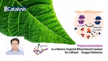 류정기 교수팀은 나뭇잎에서 일어나는 광합성 반응을 모사해 물 분해 촉매를 개발하고 이를 리튬공기전지에 적용해 성능을 향상시켰다.