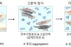그림-고분자-농도에-따른-산화-그래핀의-유효부피와-분산-모식도.jpg