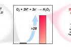 연구그림-엣지가-많은-탄소-촉매의-성능-모식도.jpg