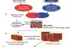 연구그림-유전자-발현-빅데이터로-마이크로RNA-발굴하는-바이클러스터링-알고리즘.jpg