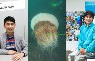 노무라입깃해파리 게놈지도 완성: 포식동물 진화에 단서