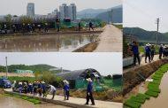 UNIST, 농번기 자매결연마을 일손돕기 구슬땀