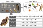야행성-조류올빼미목와-주행성-조류-게놈-비교.png