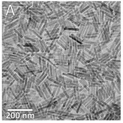 [연구그림] 합성된 나노막대의 전자현미경 이미지