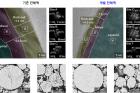 대표이미지연구그림기존-전해액과-개발-전해액TMS-ON의-양극-계면-보호-기능-비교.jpg
