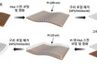 연구그림-폴리이미드-그래핀-일체형-투명-전극-제작-공정-모식도.jpg
