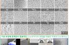 연구그림-기판의-물질과-모양에-관계없이-범용적으로-적용-가능한-나노모자이크-코팅.jpg