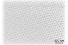 연구그림-나노-모자이크-코팅된-기판-표면의-전자현미경-사진..jpg