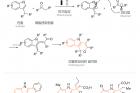 연구그림-전기에너지를-이용한-인돌로파이란-합성-과정-및-인돌로파이란이-포함된-생리활성물질.jpg