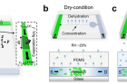연구그림-나노슬릿에서-증발현상을-이용한-저분자-물질-전달-제어-모식도.jpg