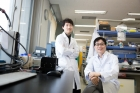 Prof.-Byung-Soo-Kim-right-and-the-researcher-Ki-Young-Jo-left.jpg