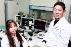 단일-유전자로-척수손상-치료가-가능한-희소돌기아교전구세포를-유도한-오른쪽부터-김정범-UNIST-교수-이현아-석박사통합과정생__-800x448.jpg