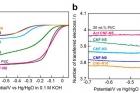Fe@NGnP-산소환원-반응-측정.jpg