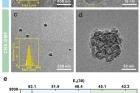 Hybrid-carbon-nanostructure-7.jpg