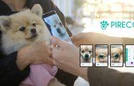 UNIST Startup to Lead International Standardization of Biometric Identification for Pets!