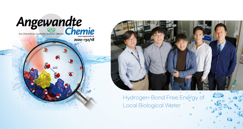 New Study Presents Hydrogen-Bond Free Energy of Local Biological Water