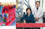 New Study Unveils 3D Human Liver-Chip Emulating Premetastatic Niche Formation by Breast Cancer-Derived EVs