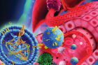 ACS-Nano-cover-image.jpg