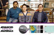 New Study Presents Transformative Metasurface Based on Zerogap Embedded Template